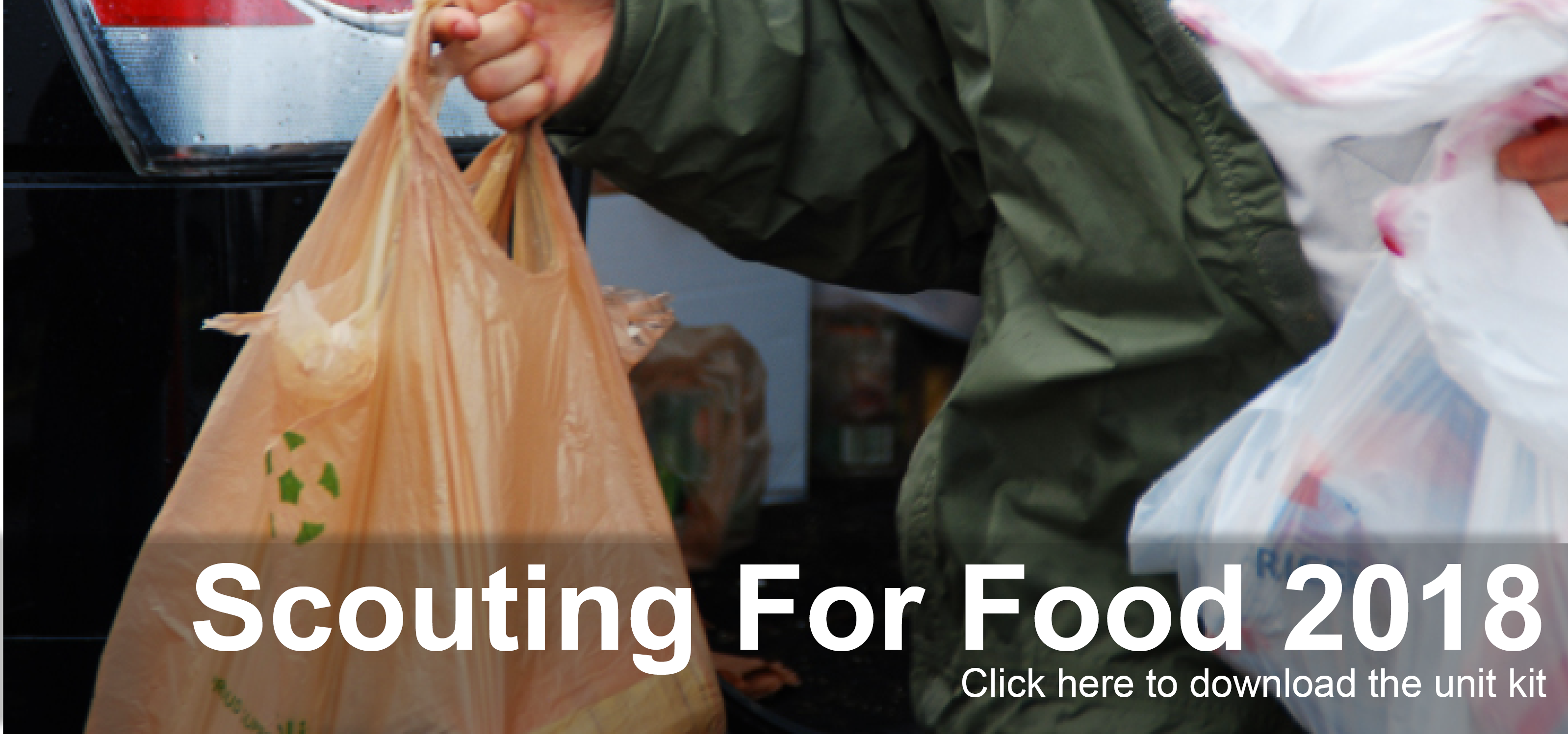 Click to download the Scouting for Food File Kit
