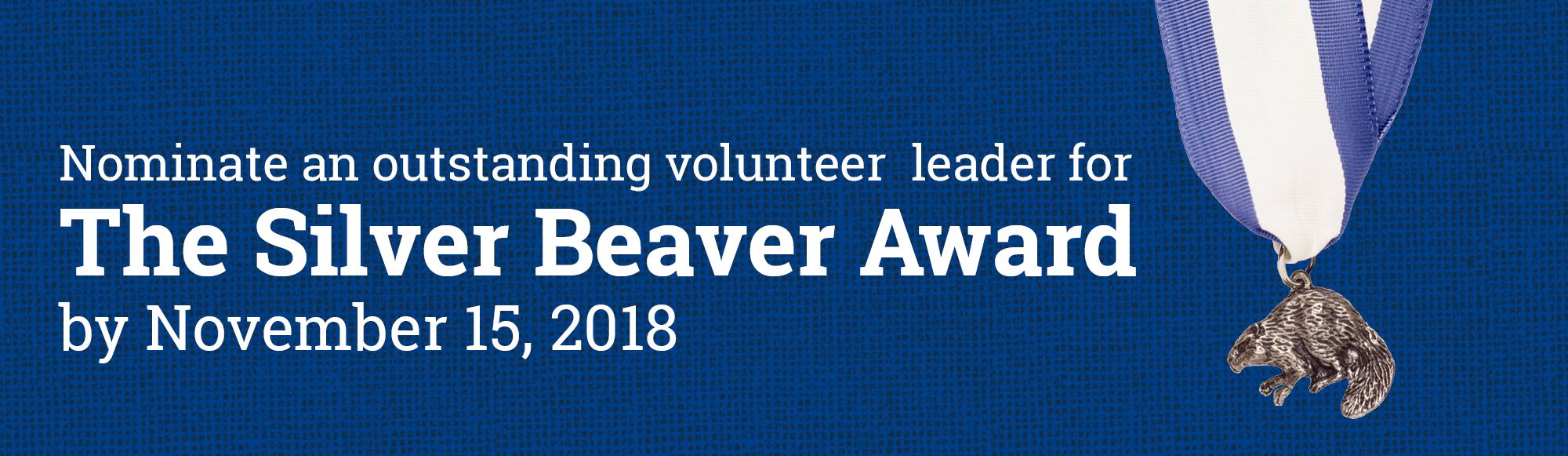 Nominate an outstanding volunteer for the Silver Beaver Award