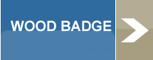 Wood Badge Button