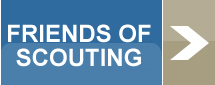 Friends of Scouting Button