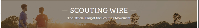 Scouting Wire Logo