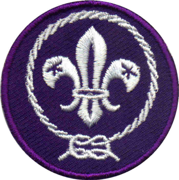 scouting world crest
