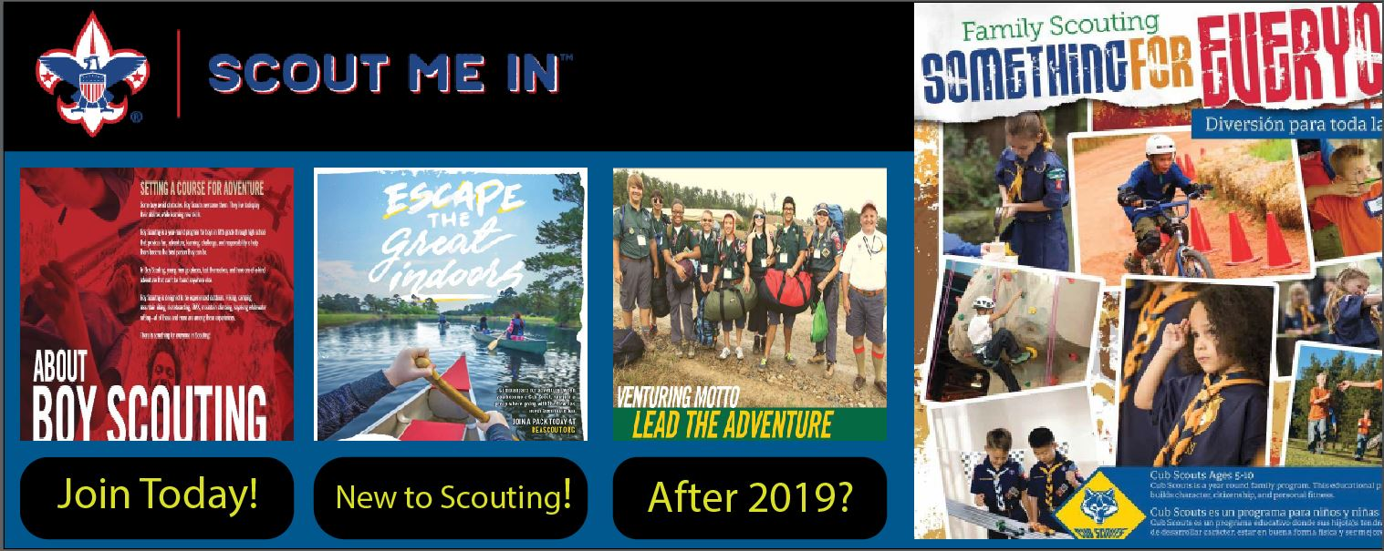 Scout Me In!!