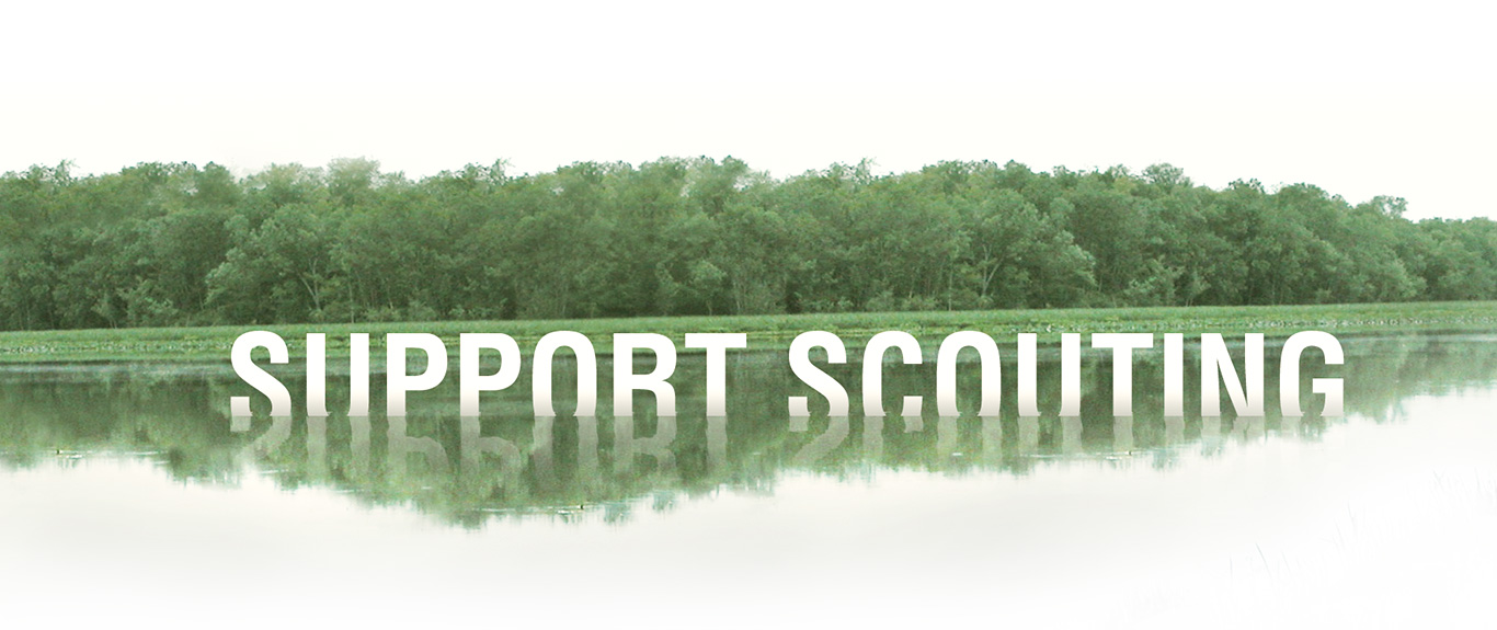 Support Scouting