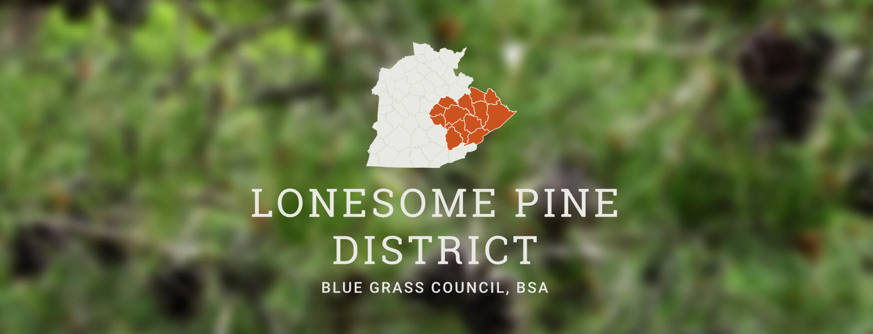 Lonesome Pine District