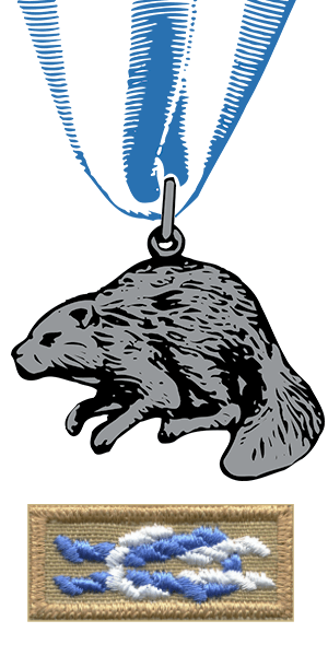 Silver Beaver Medal and Knot