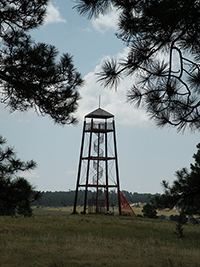 Magness Fire Tower