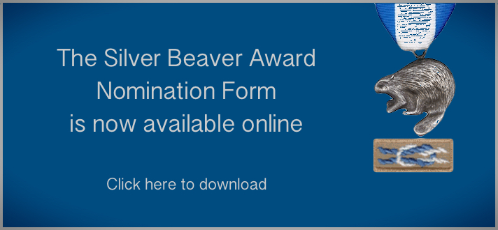 silver beaver nomination form