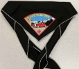 2010 Jamboree Grey Troop Neckerchief